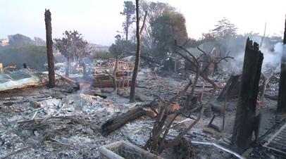 Главное за 60 секунд: катастрофические последствия лесных пожаров в Калифорнии
