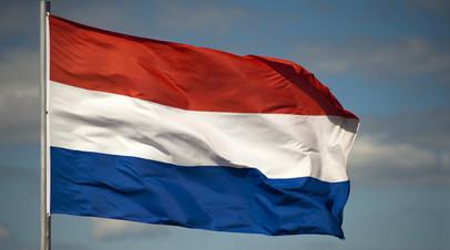 Эксперт прокомментировал отказ Нидерландов от идеи создания общеевропейской армии