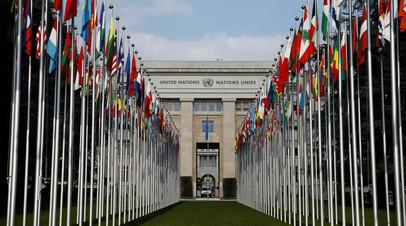 Эксперт прокомментировал заявление Украины о праве вето в ООН