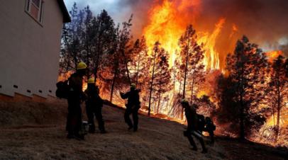 Ущерб от лесных пожаров в Калифорнии составит миллиарды долларов
