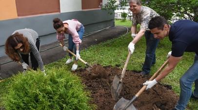 В Москве высадили шесть миллионов деревьев и кустарников за восемь лет