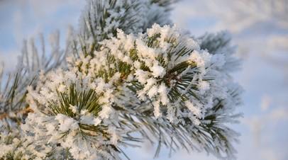 Онищенко дал рекомендации, как уберечься в мороз