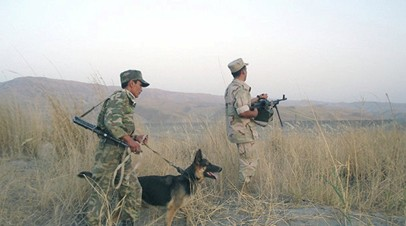 В Таджикистане прокомментировали ситуацию на границе с Афганистаном