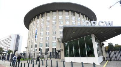 Шульгин: доклад ОЗХО по Думе игнорирует организованные Россией мероприятия